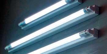лампы для освещения вешенки