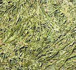 сено люцерны - питательная добавка для субстрата