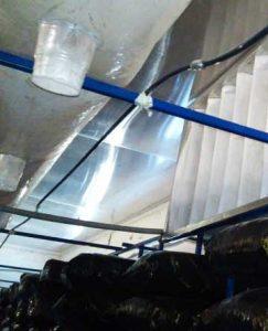 стаканы в воздуховодах для вешенки